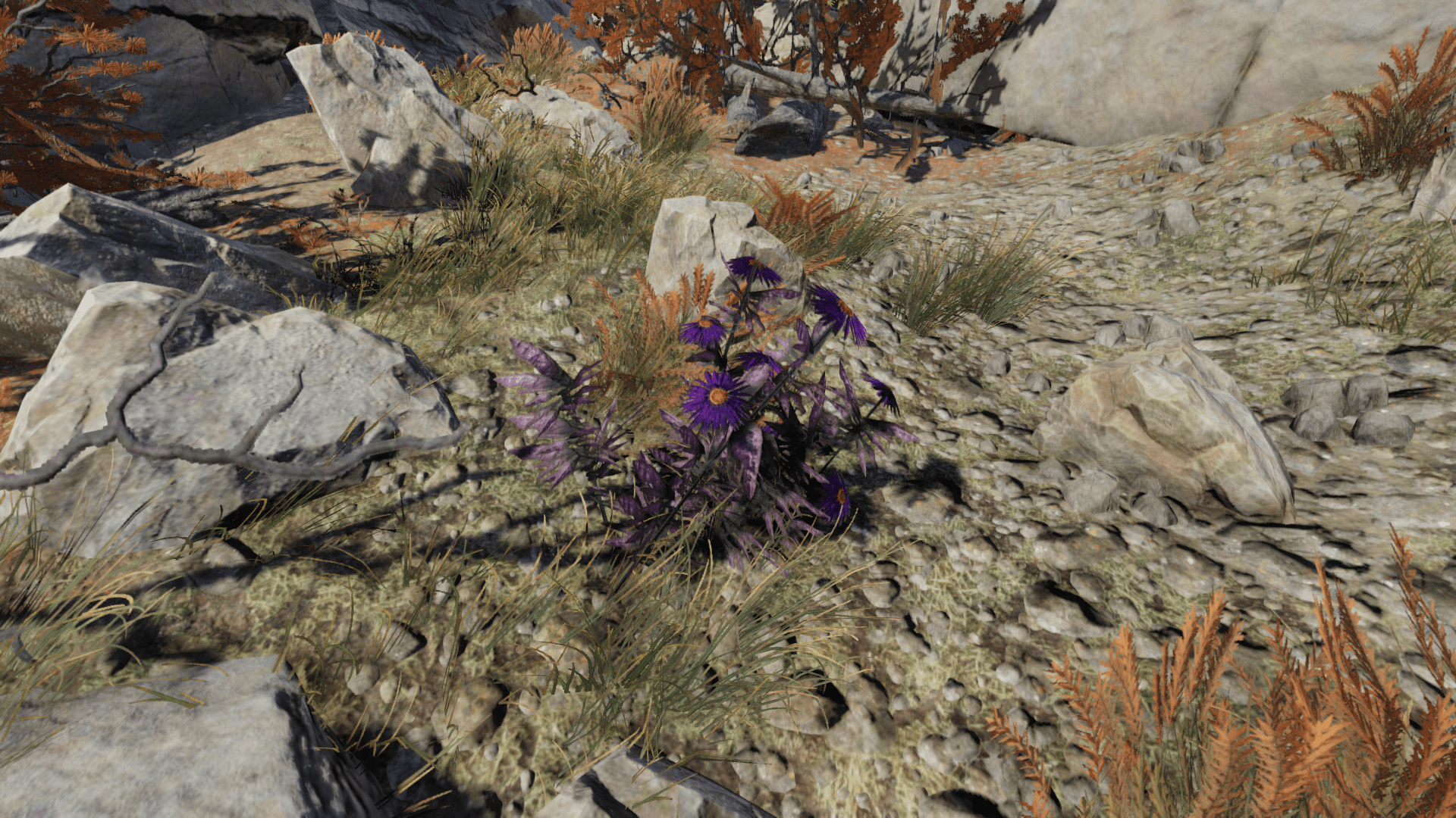 Aster Visibility Retexture Fallout 76 Mod Download
